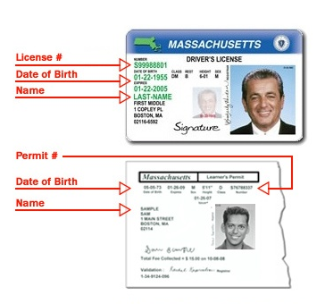 registry updates online driver's license renewal process