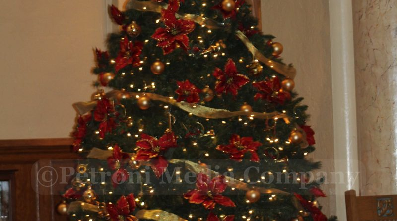 Ashland Christmas Trees.Ashland Will Pick Up Christmas Trees Twice In January