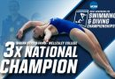 Sticco-Ivins Wins 3rd Career NCAA National Title; First In 1-Meter Diving