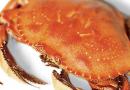 Framingham License Commission Green Lights Cracking Crab Restaurant