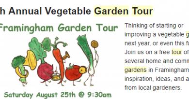 Transition Framingham Hosting 7th Annual Public Garden Tour