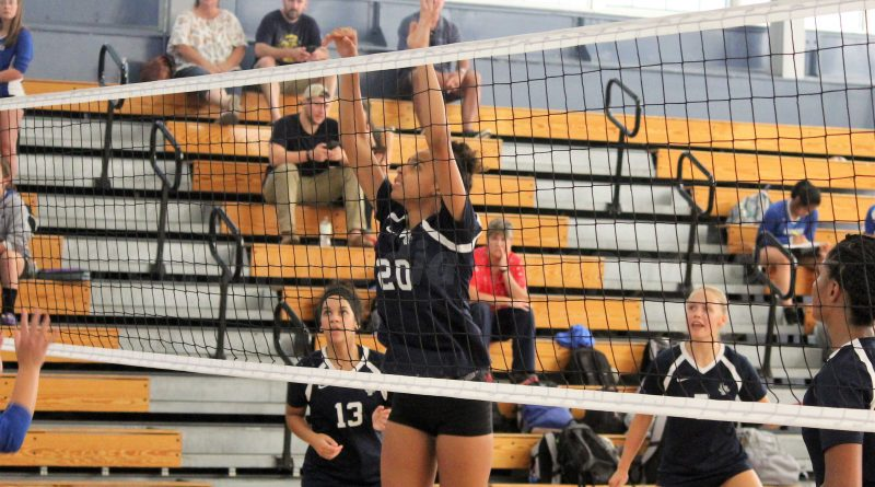 Image result for framingham high  volleyball