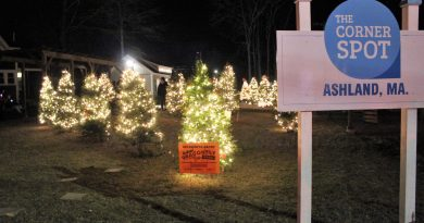 PHOTOS: Light It Up Ashland At The Corner Spot; Vote For Your Favorite Tree