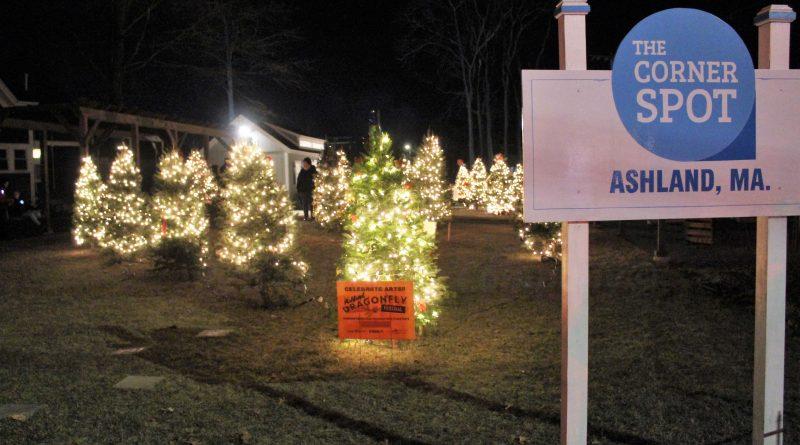 Christmas Tree Framingham Ma