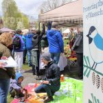 Photo of the Day: Framingham's 9th Annual Earth Day Festival