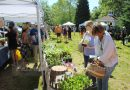 VIDEO & SLIDESHOW: Crowd Flocks To Ashland Farmers Market's 8th Season Opener