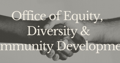 Framingham Racial Equity Audit Awarded To Mass Insight Education Research