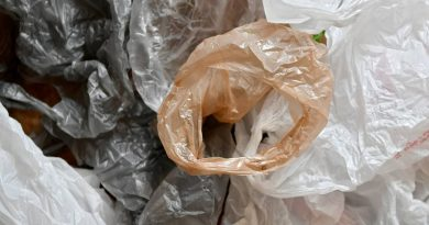 Mass Senate Proposes Ban on Carry-Out Plastic Bags at Retail Stores