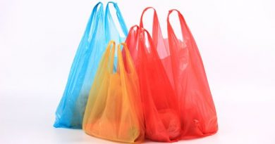UPDATED: Framingham City Council Passes 10 Cents Fee For Bags; Goes In Effect 2021