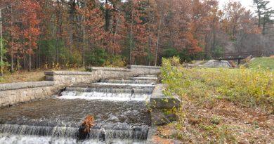 Framingham State University Awarded $26,667 Grant For Ashland Trail Improvements