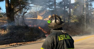 Ashland Battles Brush Fire